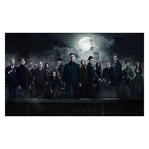 Неформатный постер Gotham. Размер: 100 х 60 см